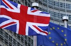Mỹ kêu gọi Anh và EU mềm dẻo trong đàm phán về Brexit