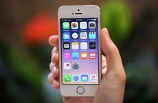 Doanh số iPhone tiếp tục giảm khi iPhone 7 dự báo gây thất vọng