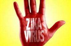 Mỹ ban bố tình trạng y tế khẩn cấp về Zika tại Puerto Rico