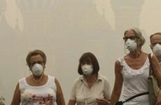 Ô nhiễm không khí có thể dẫn đến căn bệnh mất trí nhớ Alzheimer
