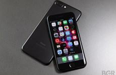 iPhone 7 và 7 Plus bị phàn nàn gặp vấn đề âm thanh khi gọi điện