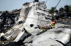Lực lượng đòi độc lập ở miền Đông Ukraine phủ nhận bắn rơi MH17