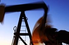 Chuyên gia: Thỏa thuận OPEC không đủ sức vực dậy giá dầu