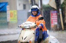 Miền Bắc mát mẻ, Nam Bộ mưa dông đề phòng gió giật mạnh