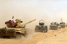 Quân đội Iraq kiểm soát gần 20 ngôi làng ở ngoại ô Mosul