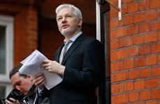 Ecuador thừa nhận hạn chế hệ thống thông tin Sứ quán tại London