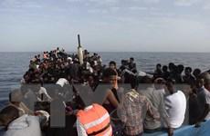 NATO nhất trí tăng hợp tác EU trong chống nạn di cư trái phép