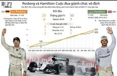 [Infographics] Rosberg và Hamilton tranh đua danh hiệu vô địch F1