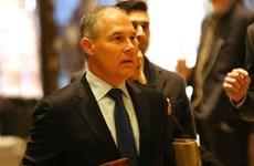 Ông Trump gây bất ngờ khi chọn người đứng đầu cơ quan môi trường