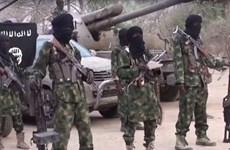Quân đội Nigeria giải thoát 800 con tin khỏi nhóm Boko Haram