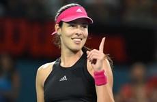 Nhìn lại 13 năm sự nghiệp của One-Slam Wonder Ana Ivanovic