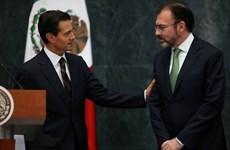 Tổng thống Mexico bổ nhiệm Ngoại trưởng và Bộ trưởng Văn hóa mới