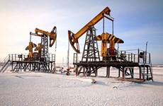 Nga bắt đầu giảm sản lượng khai thác dầu theo cam kết với OPEC