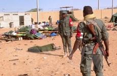 Phiến quân thân Al-Qaeda nhận đánh bom kinh hoàng ở Mali