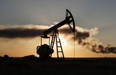Các nước xuất khẩu dầu mỏ đánh giá việc thực hiện cắt giảm sản lượng