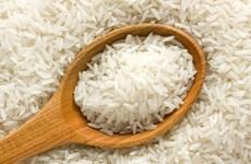 Chính quyền Malaysia bác thông tin nhập khẩu phải gạo giả