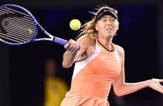 """""""Búp bê Nga"""" Sharapova được đặc cách dự Madrid Open 2017"""
