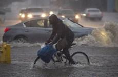 Miền Tây nước Mỹ hứng chịu cơn bão tồi tệ nhất trong nhiều năm
