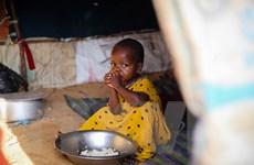 Người tị nạn châu Phi đang đối mặt với thảm họa chết đói khủng khiếp