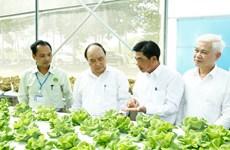 Nông nghiệp công nghệ cao: Chính sách nhiều, thụ hưởng thực tế rất ít