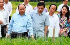 Thủ tướng đồng ý cho An Giang đầu tư Khu nông nghiệp công nghệ cao