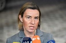 """EU: Syria cần """"hòa bình ủy nhiệm"""" thay vì """"chiến tranh ủy nhiệm"""""""