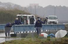 Truyền hình Nhật Bản đưa tin vụ phát hiện thi thể bé gái người Việt