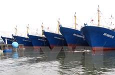 Nhiều chủ tàu vỏ thép ở tỉnh Bình Định nguy cơ bị phá sản