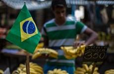 Brazil dự báo tỷ lệ lạm phát giảm mức thấp nhất trong hơn một thập kỷ