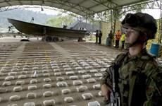 Colombia thu giữ hơn 1 tấn cocaine vận chuyển đến Trung Mỹ