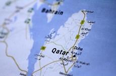 Ai Cập đòi LHQ điều tra Qatar trả 1 tỷ USD tiền chuộc cho khủng bố