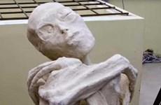 """Phát hiện """"xác ướp"""" kỳ lạ ở Peru được cho là của người ngoài hành tinh"""
