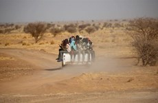 Niger: LHQ cứu hơn 20 người bị bỏ rơi nhiều ngày tại sa mạc