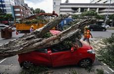 Các tỉnh phía Nam Trung Quốc đón cơn bão thứ hai chỉ trong hai ngày