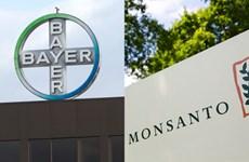 Châu Âu mở điểu tra về thương vụ Bayer-Monsanto trị giá 66 tỷ USD
