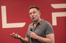 Elon Musk: Cạnh tranh về trí tuệ nhân tạo có thể gây ra Thế chiến 3