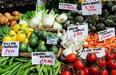 Liên hợp quốc: Giá lương thực thế giới giảm trong tháng Tám