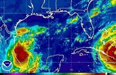 Sau động đất, Mexico tiếp tục chuẩn bị đối phó với bão Katia
