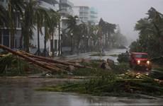Bão Harvey và Irma có thể gây thiệt cho nước Mỹ lên tới 290 tỷ USD
