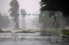 Siêu bão Irma gây lũ lụt và mất điện trên diện rộng tại Florida