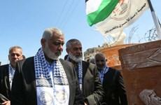 Phong trào Hamas tại Dải Gaza cải thiện quan hệ với Ai Cập