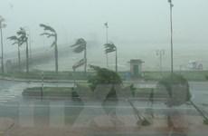 Diễn biến bão số 10: Nhiều tuyến đường Quảng Bình ngập sâu trong nước