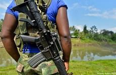 Colombia: Chính phủ và ELN đề nghị LHQ tham gia giám sát ngừng bắn