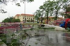 Lãnh đạo Cuba thăm hỏi về thiệt hại do mưa lũ ở miền Trung Việt Nam