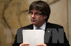 Tây Ban Nha đồng ý để lãnh đạo Catalonia tranh luận trước Quốc hội