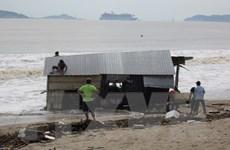 Khánh Hòa tìm thấy 12 thi thể trôi dạt trên biển sau bão số 12