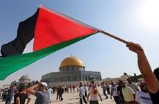 Các phe phái Palestine họp ở Cairo để thúc đẩy thỏa thuận thống nhất