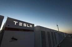 Ellon Musk thắng cược dự án pin tích điện lớn nhất thế giới
