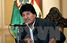 Tổng thống Bolivia Evo Morales có cơ hội nắm quyền nhiệm kỳ thứ tư