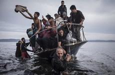 Estonia đưa ra đề xuất mới về hạn ngạch phân bổ người tị nạn của EU
